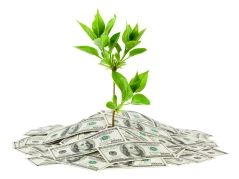 Grow-savings-with-solar-investment