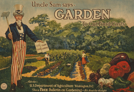 Vintage poster of Uncle Sam standing in a corner, a man and woman gardening in the background and a pile of vegetables in the lower right hand corner. The text reads: Uncle Sam says - garden to cut food costs. Ask the U.S. Department of Agriculture, Washington, D.C., for a free bulletin on gardening - it's food for thought.